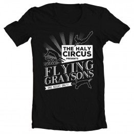 Batman The Flying Graysons