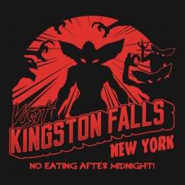 Visit Kingston Falls