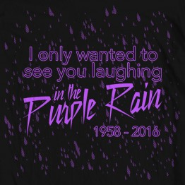 Prince Purple Rain Tribute