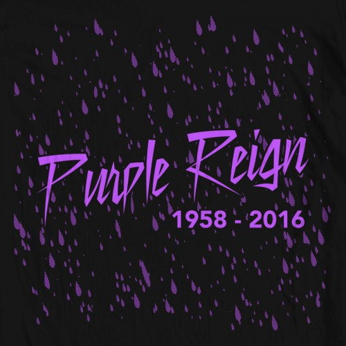 Prince Purple Reign Tribute