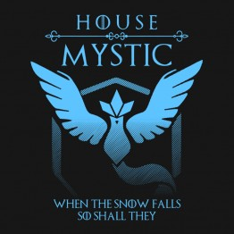 Pokemon Go House Mystic