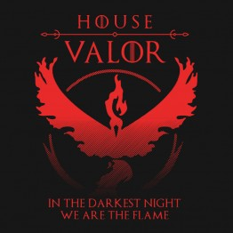 Pokemon Go House Valor
