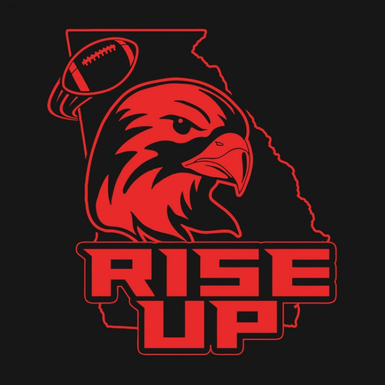 rise up falcons shirt