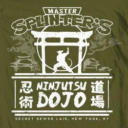 TMNT Splinter's Dojo